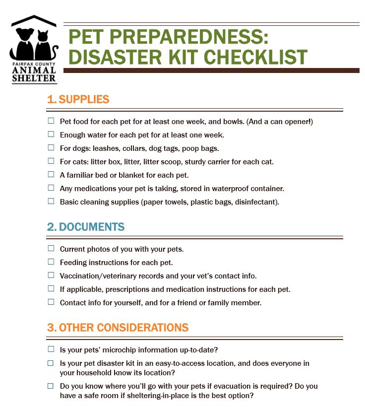 Emergency Pet Preparedness Animal Shelter