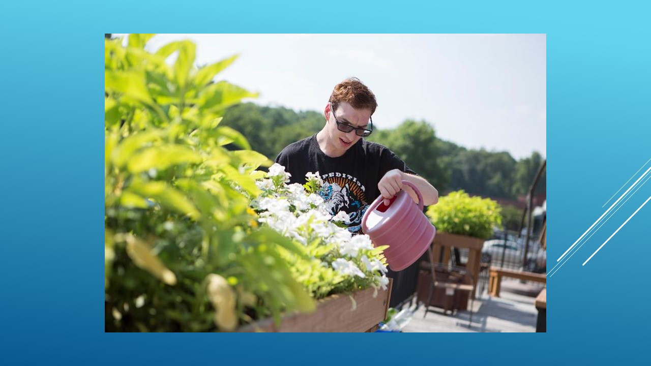 Photo of young man watering flowers