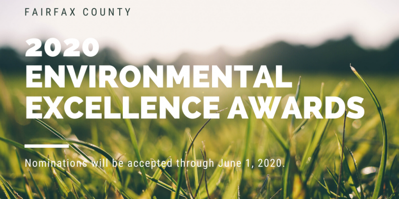 2020 Environmental Excellence Awards Graphic