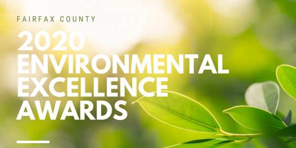 A graphic celebrating the 2020 Environmental Excellence Awards