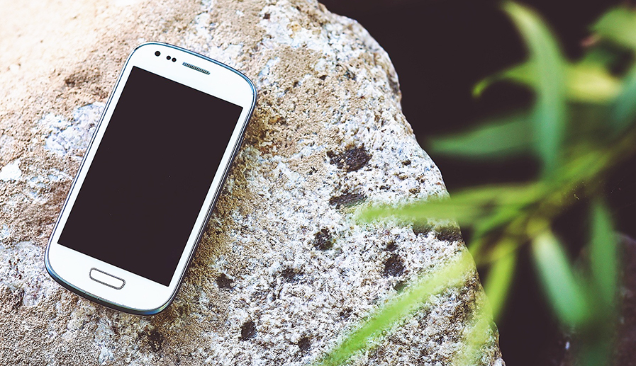 smartphone on rock with plant