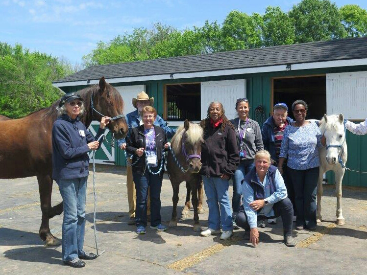 ADHC participants visit the Spirit Equestrian Program at Frying Pan Park