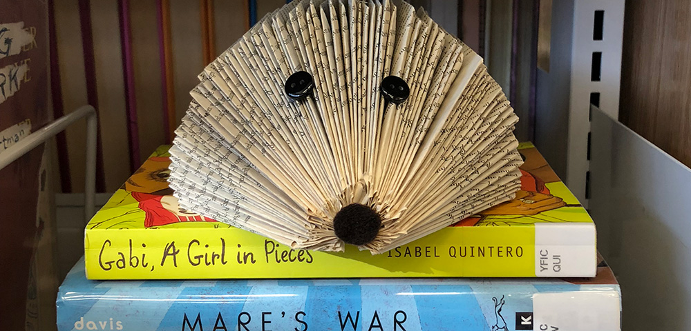 Transform an old book into a hedgehog, turn an old CD into art and more as we make upcycled crafts for upcoming Earth Day. Materials provided.