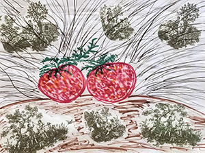 Drawing of strawberries and grass