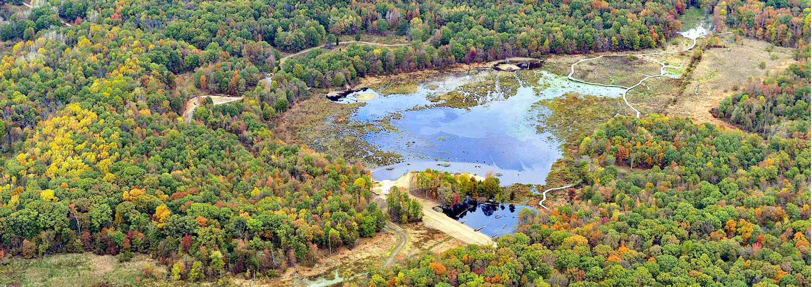 Aerial view of Huntley Meadows in fall