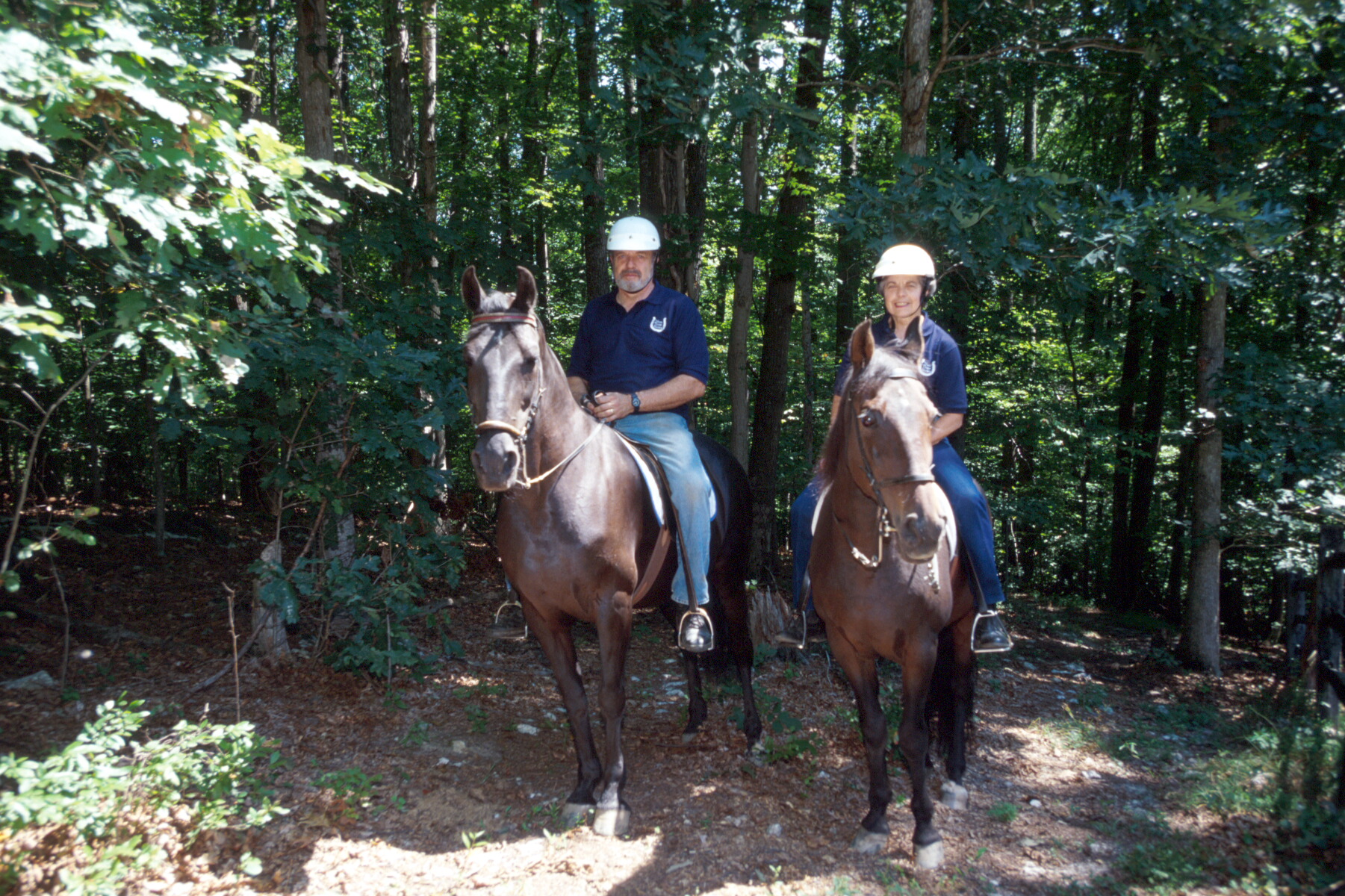 People riding horses on trail