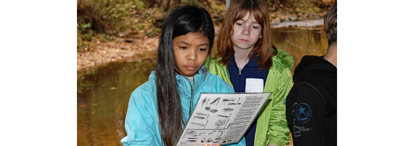 Two students compare an identification chart with their discoveries from a creek