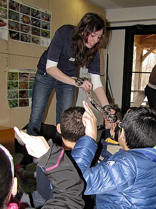 A naturalist plays show-and-touch with a snake and a group of children