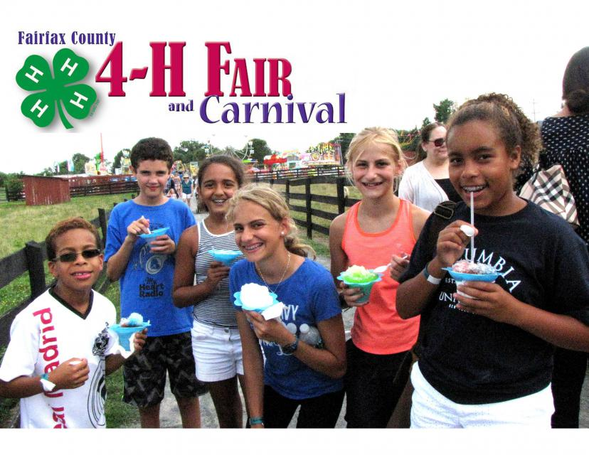 Frying Pan 4-H Fair and Carnival Banner