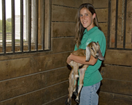 Volunteer holds a goat inside the Kidwell Farm barn