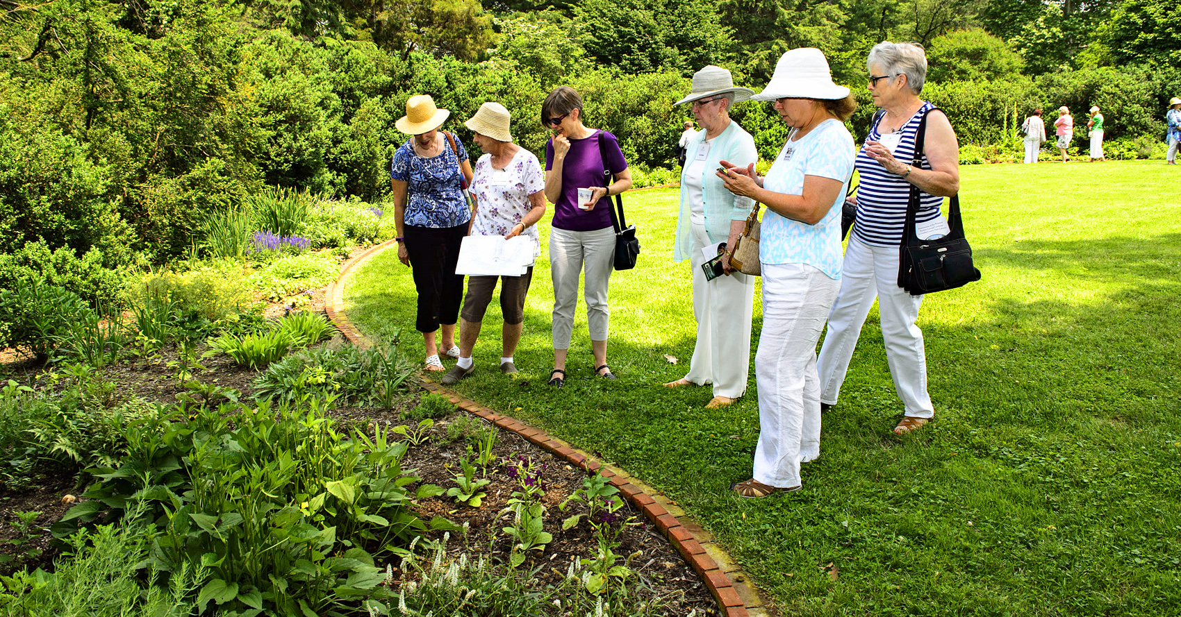 A tour group admires plants in the Farrand landscape