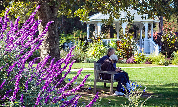 Two people sit on a bench amid blooming trees and flowers