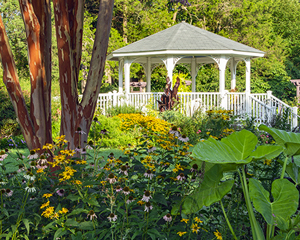 A gazebo surrounded by blooming flowers