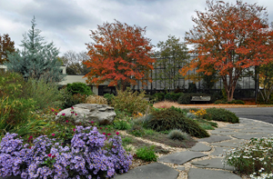 Rock garden in bloom sits in front of Green Spring's horticulture center