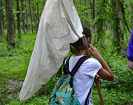 Young child carries a net on a hiking trail