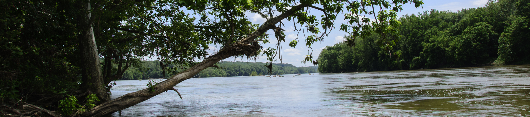 Photo of Potomac River from Riverbend