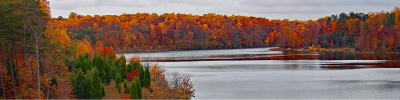 Trees will fall-colored leaves line the shore of Lake Mercer