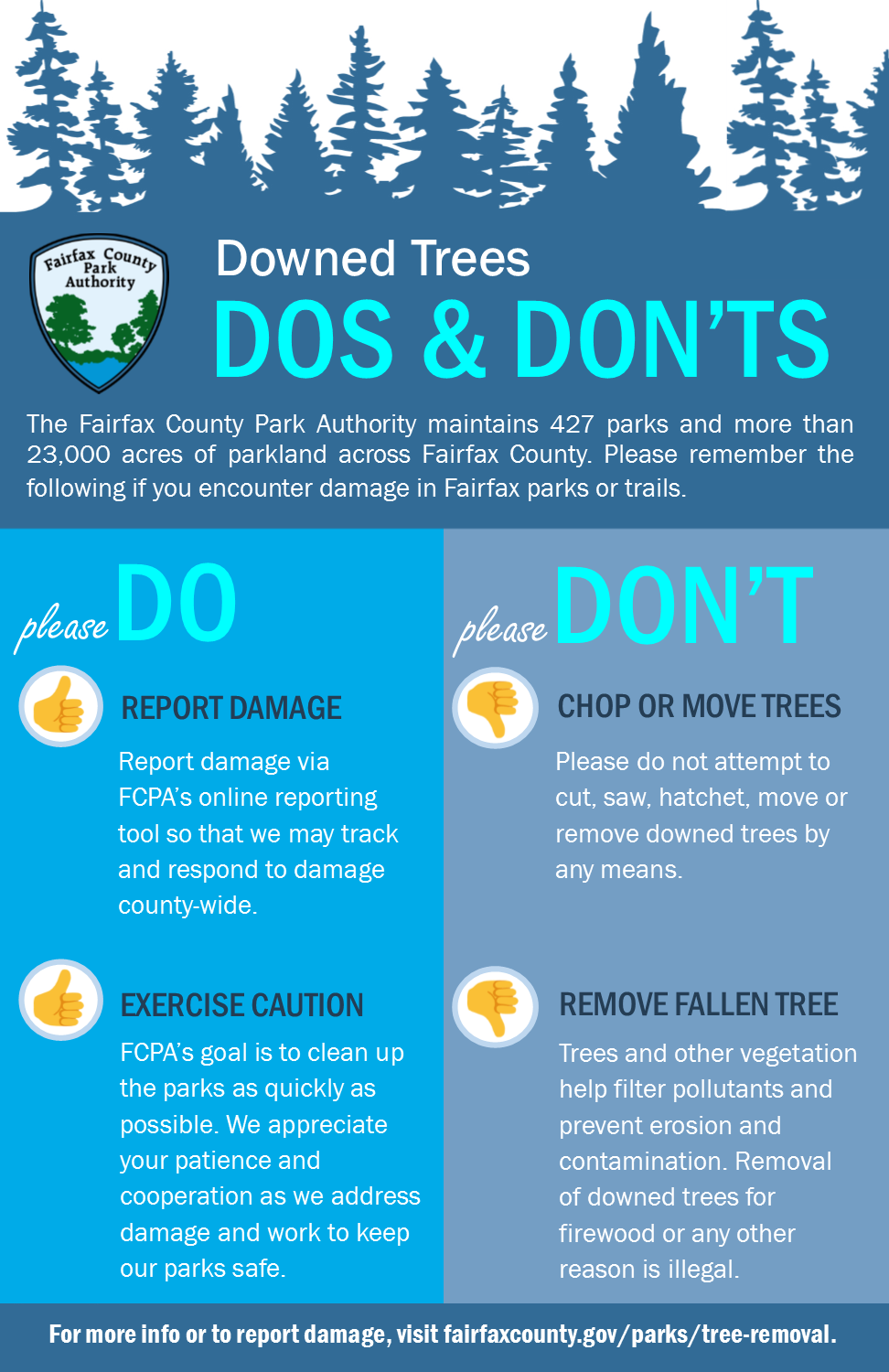 Downed Trees Dos &Don't