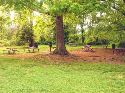 Mason District Picnic Area