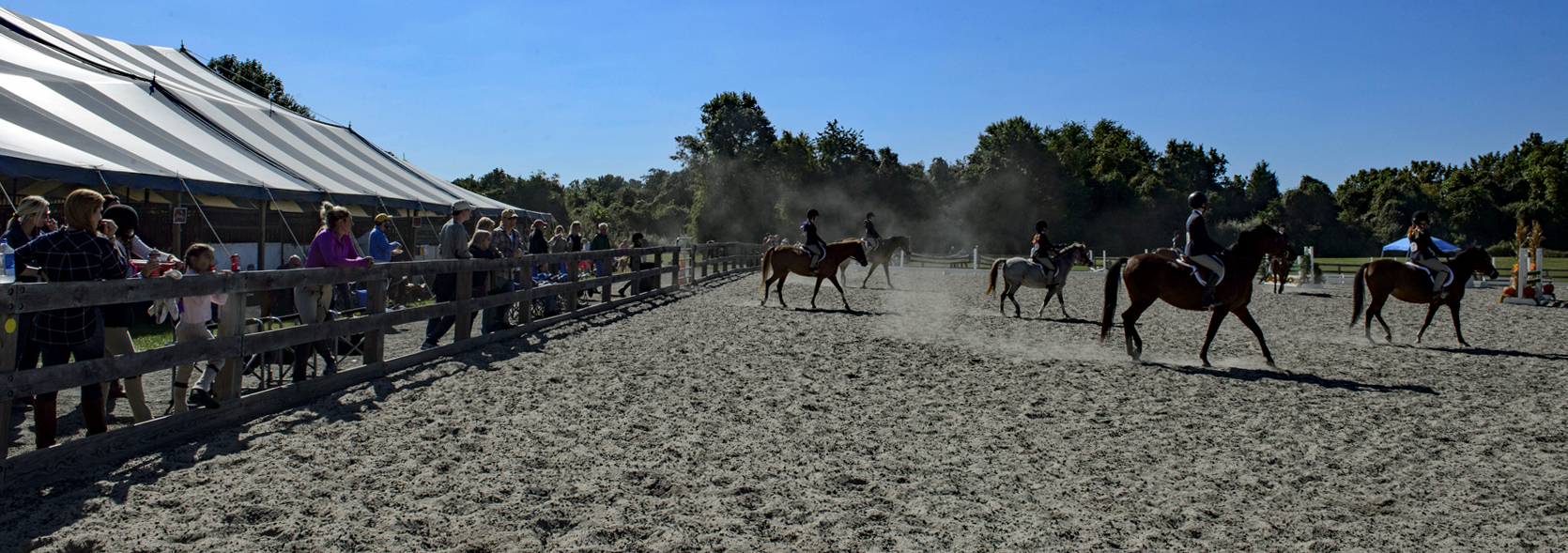 Spectators watch several riders and horses perform in the ring