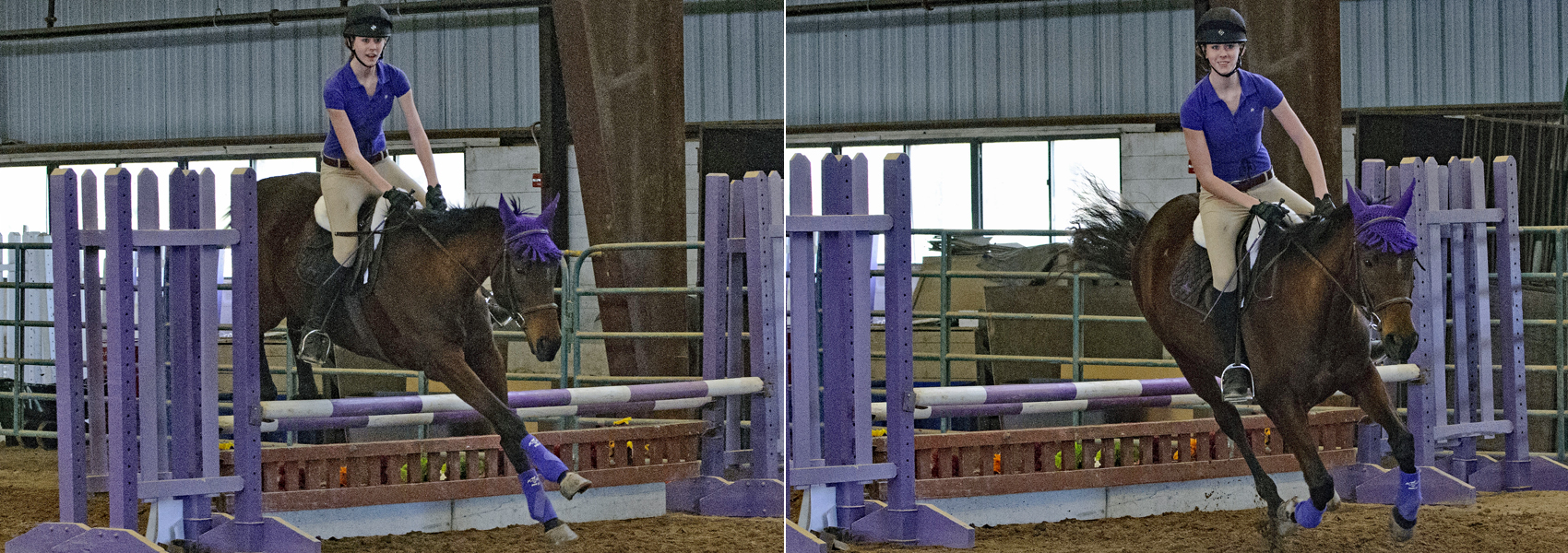 Rider and horse jump over rails