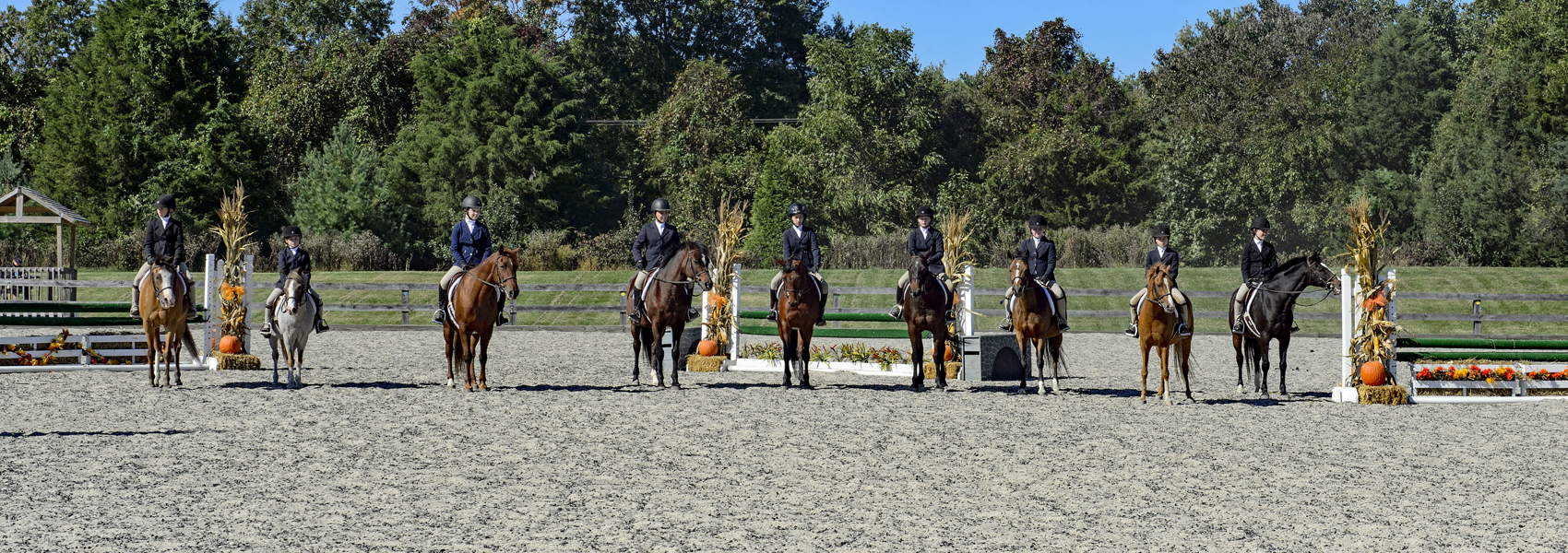 A long row of mounted horses stands in a riding ring