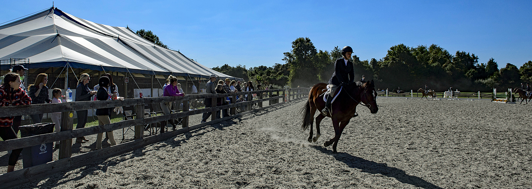 Equestrian and horse ride past a row of spectators