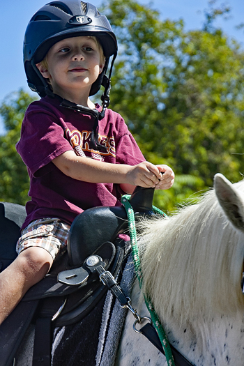 Young boy wearing helmet sits atop a horse