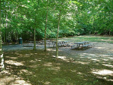 Burke Lake Picnic Area #2
