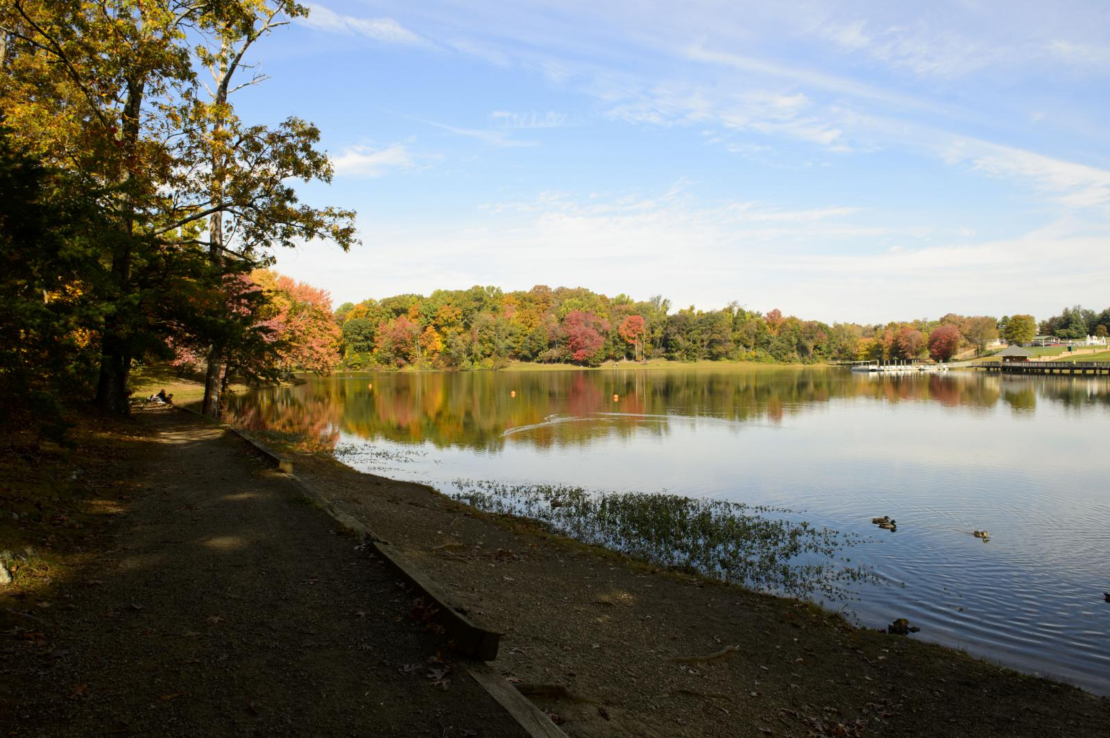 Lake Fairfax during Fall