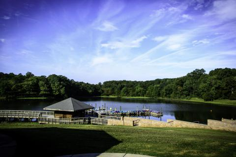 Explore Lake Fairfax Park with a Naturalist