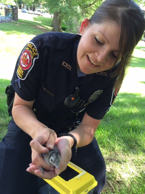 APPO McLemore Rescues Baby Bird