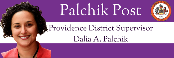 Palchik Post graphic