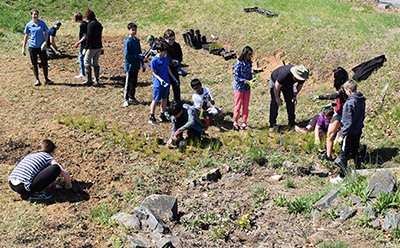 Students Planting at Lake Braddock Secondary School