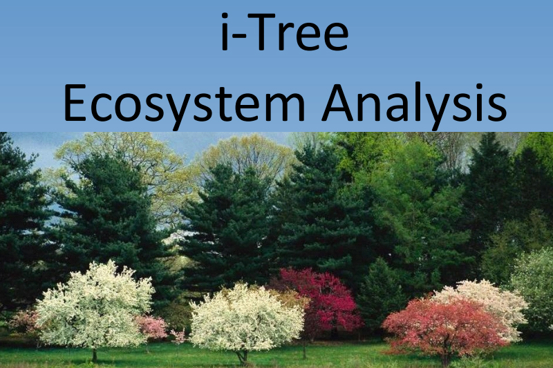 I-Tree Ecosystem Analysis Report Cover