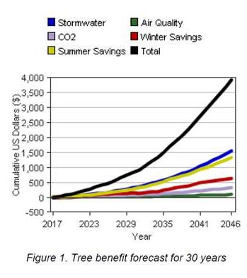 Tree Benefit forecast for 30 years
