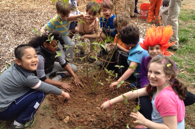 Tree planting at elementary school