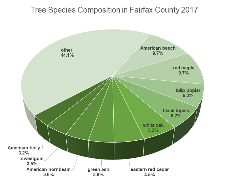 Tree Species Composition in Fairfax County 2017