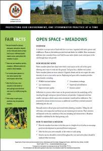 Open Space - Meadows