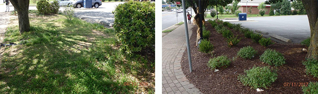 Improved landscaping at post office