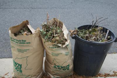 yard waste in paper bags and reusable bin