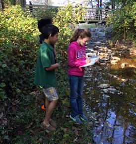 students monitoring litter in stream