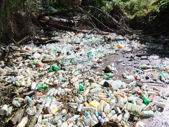 Litter from storm drains flows directly to local creeks and streams, on to the Potomac River, the Chesapeake Bay, and the Atlantic Ocean.