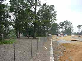 Urban Forest Management in Fairfax County