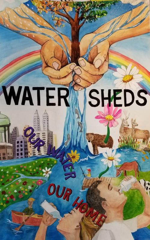 """Watersheds: Our Water, Our Home"" by Sarah Kim"