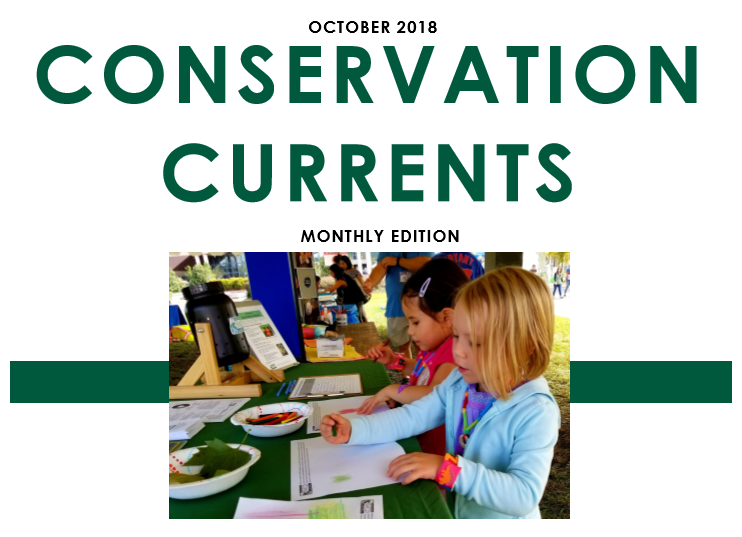 October 2018 Conservation Currents