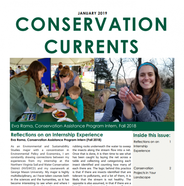January 2019 Conservation Currents