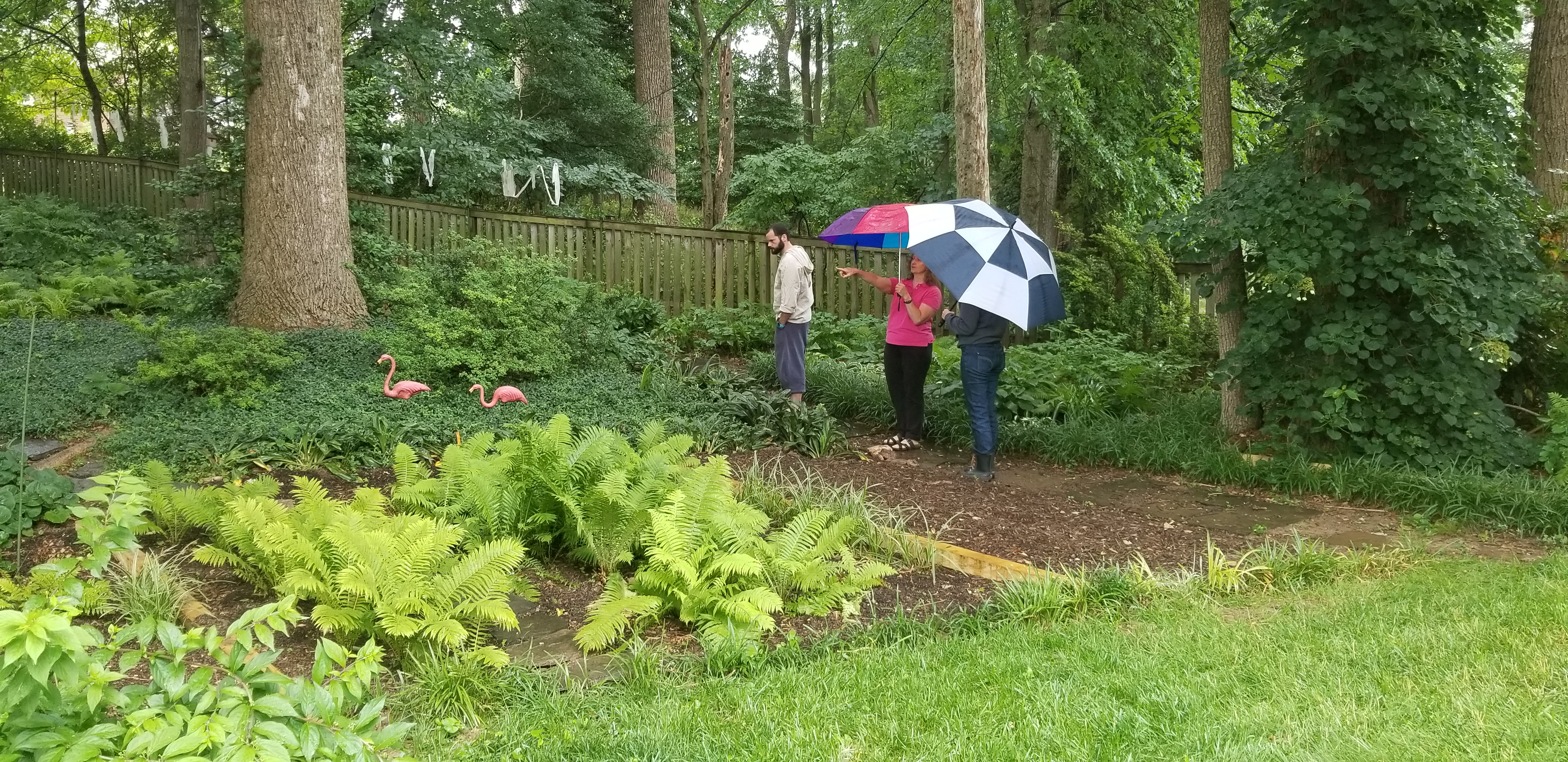 One homeowner showed how they used native plants to control erosion on a slope.