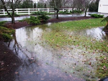 Widespread Wetness After Storms - Wet Yard - Solving Drainage Problems Northern Virginia Soil And