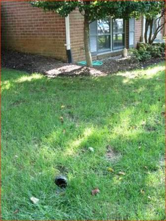 Downspout extensions carry water away from the foundation and discharge onto a gently sloped, grassy area in the lawn.